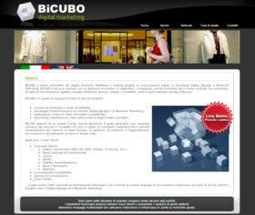 Sito web per BiCUBO Srl